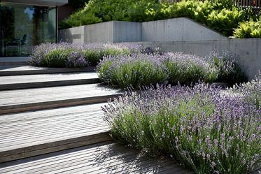 gartengestaltung in zürich - gärtner zürich, Garten ideen
